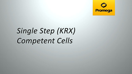 Single Step KRX Competent Cells Animation